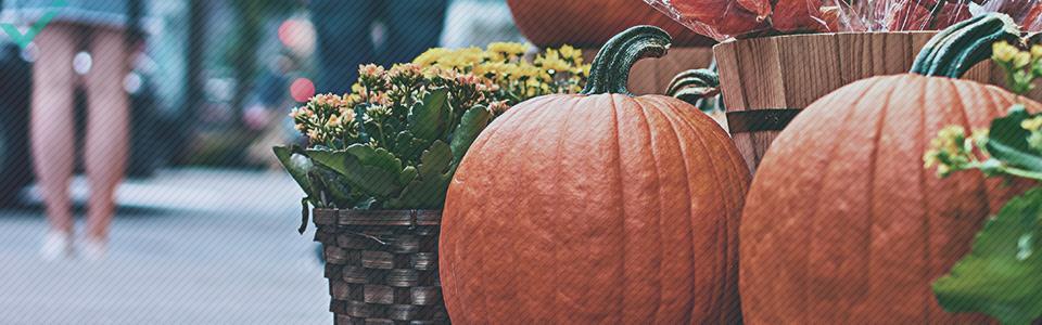 Environ 48 % des Italiens célèbrent Halloween.
