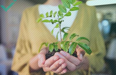E-commerce et préservation du climat : que pouvez-vous faire ?